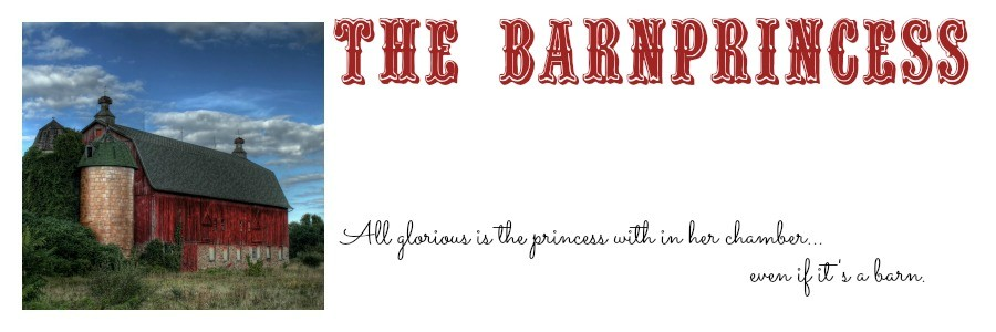 cropped-The-BarnPrincess-header